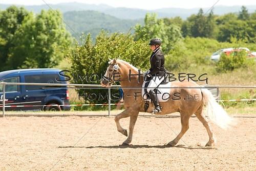 (c)SimoneHomberg_Ponyfest_So_20150607_0006