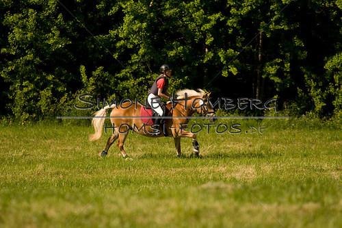 (c)SimoneHomberg_Ponyfest_So_20150607_0514