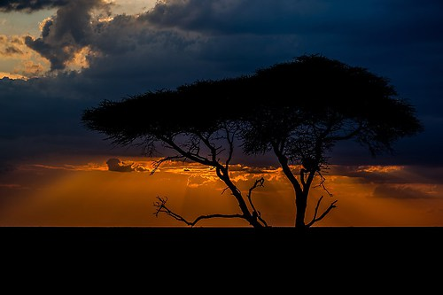 10_Eberl Harald_Sonnenuntergang in Tansania
