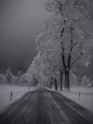 81_Strasser Martin_Ice Age