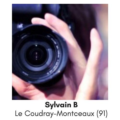 Sylvain B