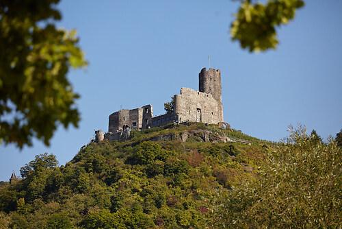 Burg Landshut
