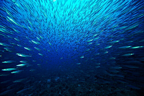 2011_09_03_10Uhr26_Andreas_4585
