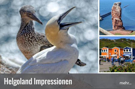 Helgoland Tourismus