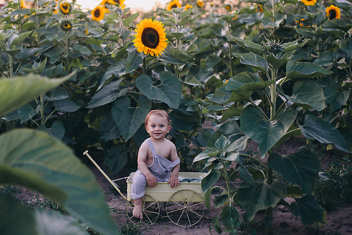 geblitztdings.de_babyfotografie-2769