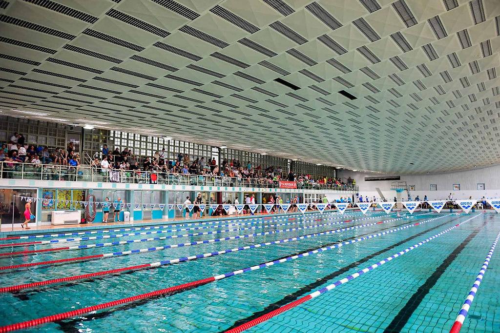 19. offene LMS BRB 2016 014   19. offene Landesmeisterschaft Schwimmen BRB
