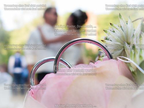 3179_1-160 Sek. bei f - 3,5_ISO 80_Canon PowerShot G9-2