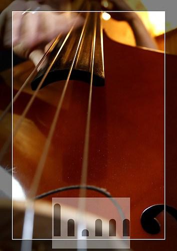 Bass-01