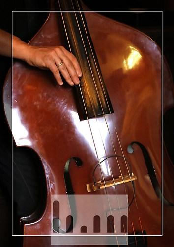 Bass-02
