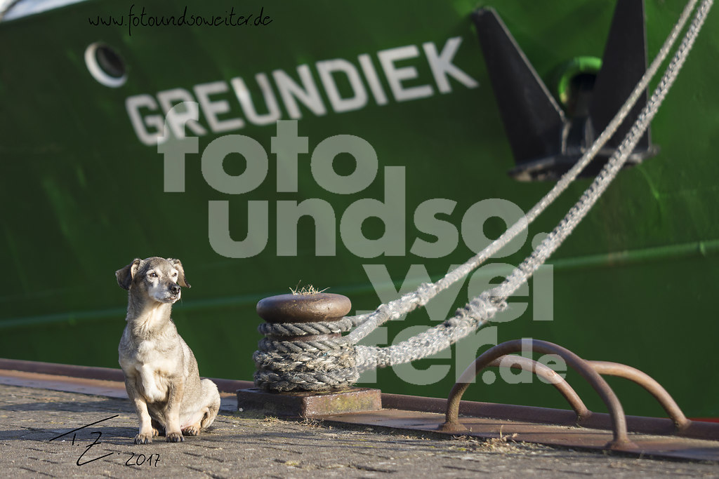 Otto_Greundiek2_sign