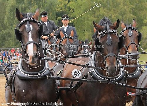 IMG_2846k Lord Udo & Veritas