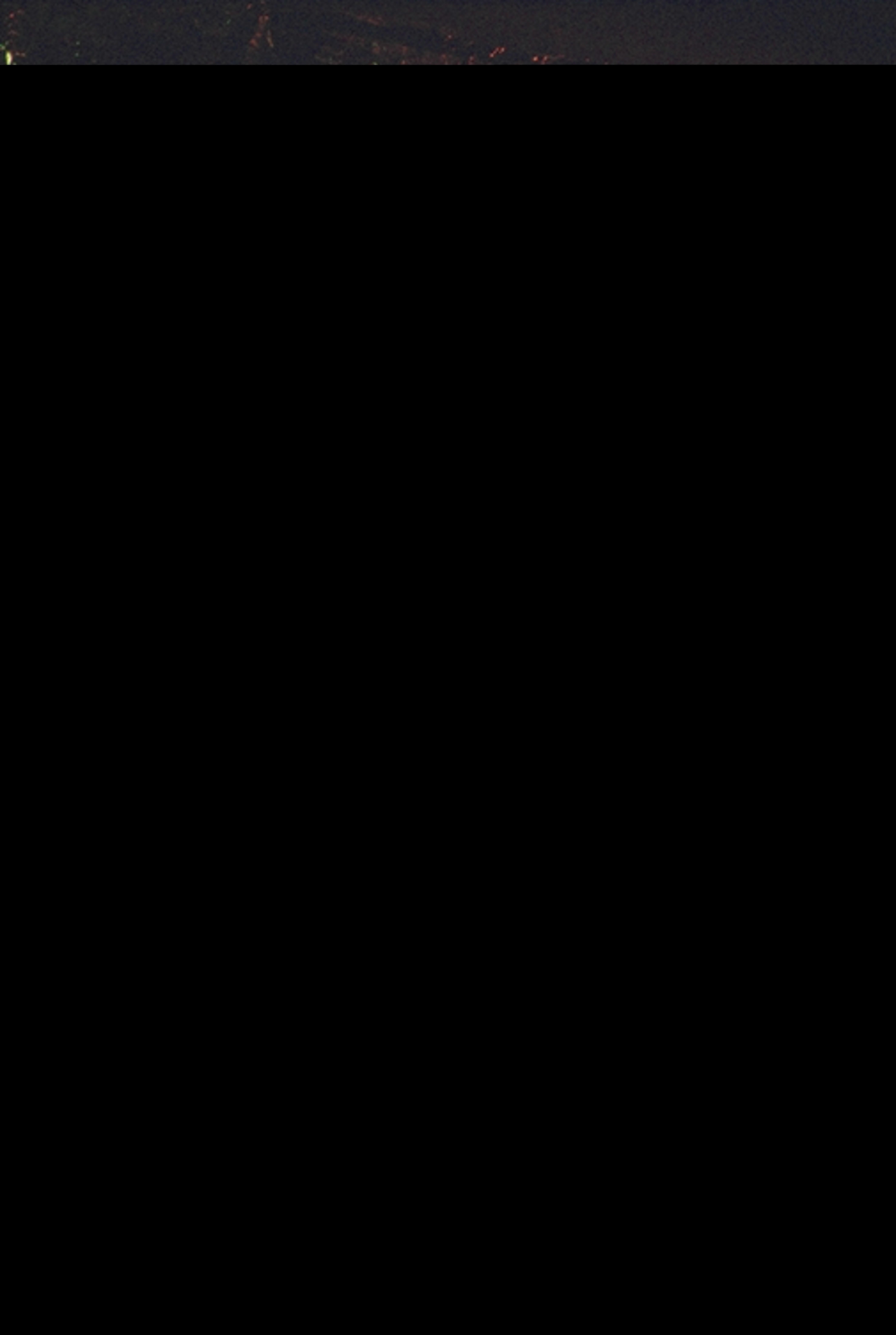 IMG0019