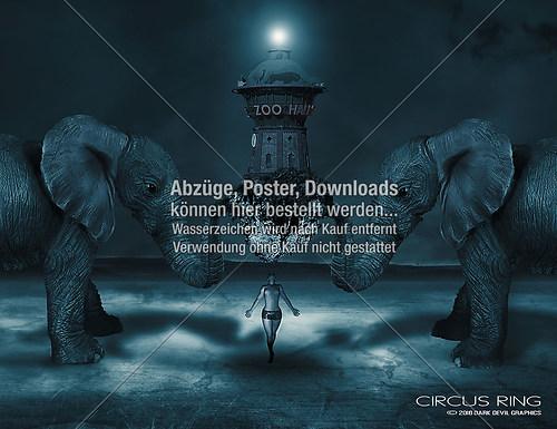 circus-ring