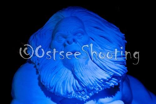 Eiswelt (© OstseeShooting) (2 von 2)