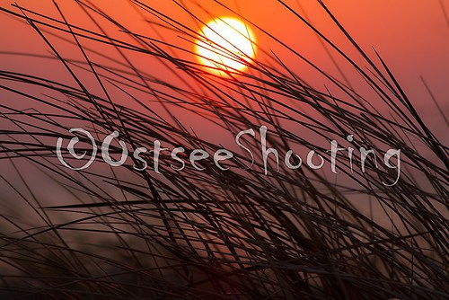 Sundown (© OstseeShooting) (1 von 2)