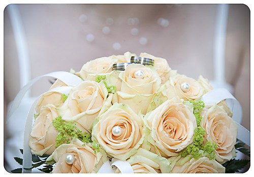 creme Blüten