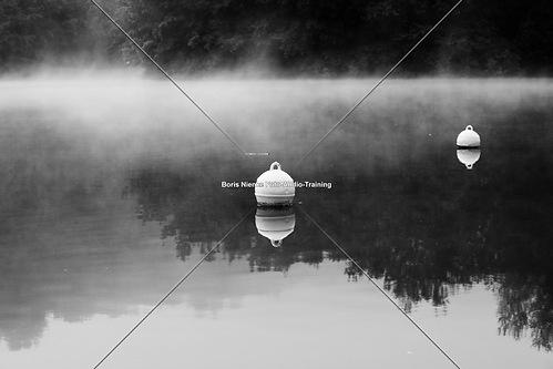 Nebelschwaden (20090814-IMG_1205)