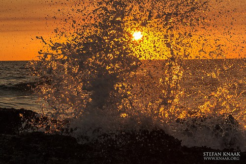11 gold coast-9658