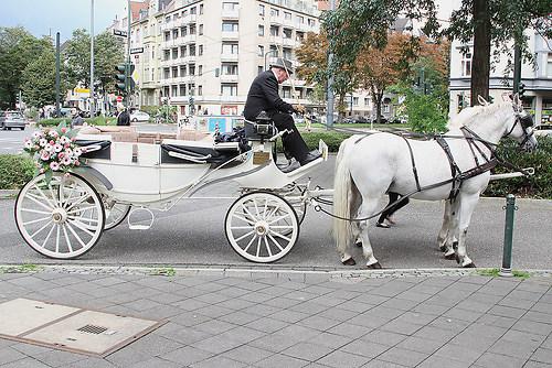 Hochzeit Angela Düsseldorf 28.08.2010 Bild 288