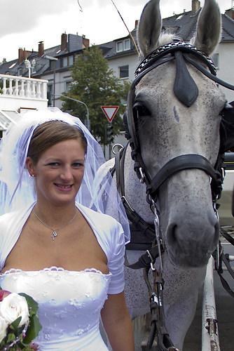 Hochzeit Angela Düsseldorf 28.08.2010 Bild 343