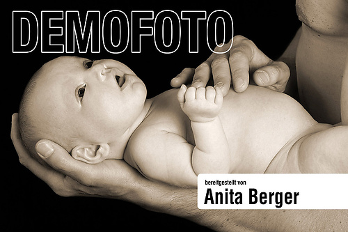 portfolio28