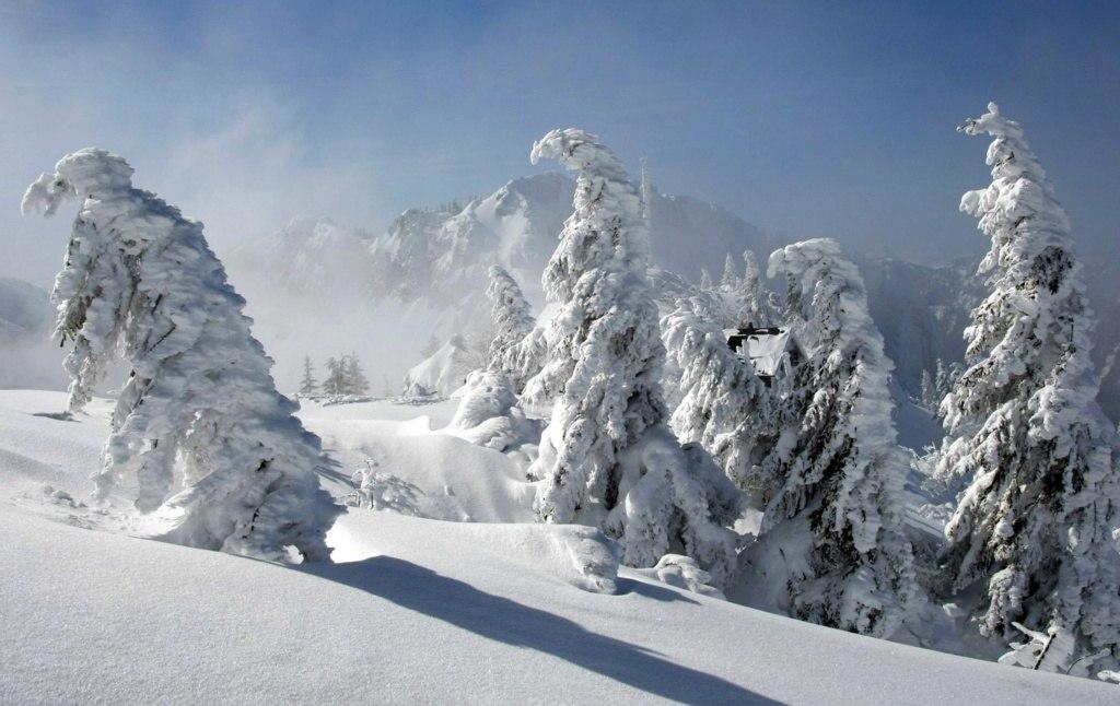 Winterlandschaft  Kampenwand -01-0209