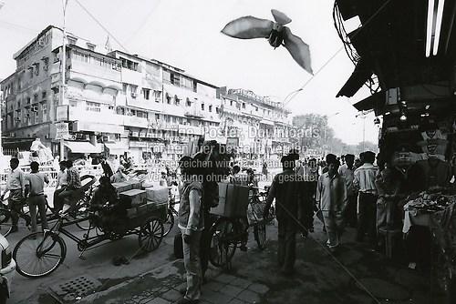 Indien-0116