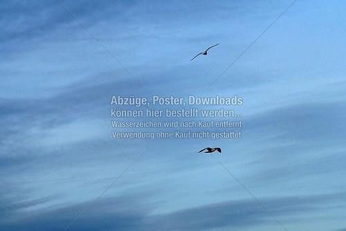 Nordsee-Impressionen 2014 (Nordsee-009)