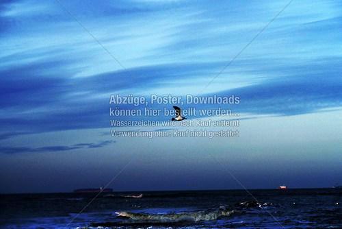 Nordsee-Impressionen 2014 (Nordsee-010)